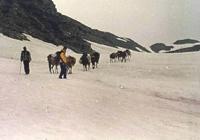 Jeep tour Delhi –Manali- Tsomoriri Ladakh