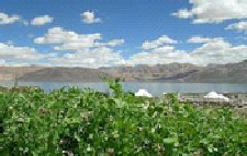 luxury hotels in Leh